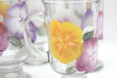 Irish hibiscus close up